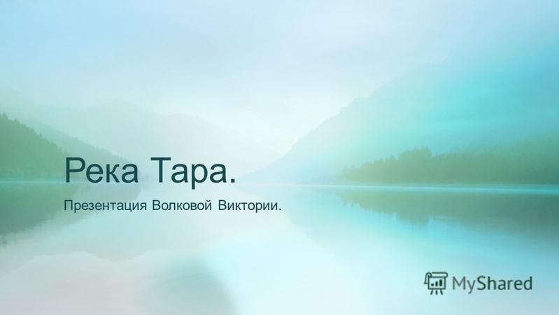 Река Тара. Презентация Волковой Виктории.