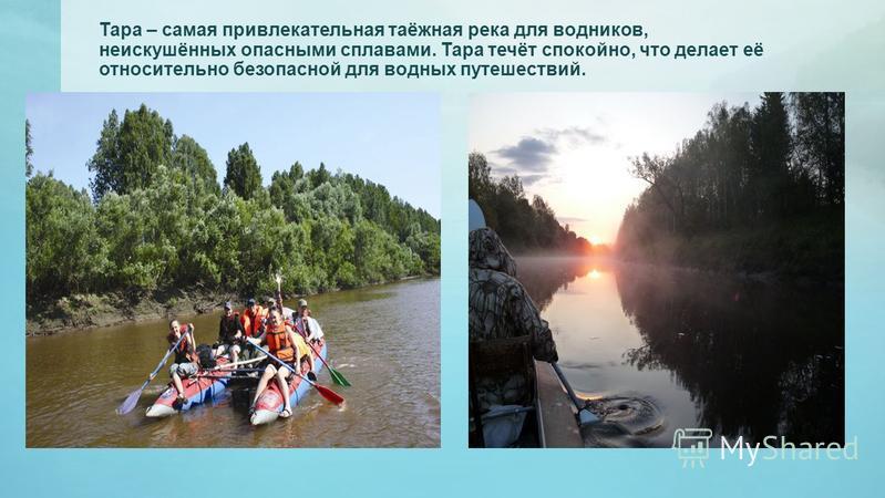 Тара – самая привлекательная таёжная река для водников, неискушённых опасными сплавами. Тара течёт спокойно, что делает её относительно безопасной для водных путешествий.