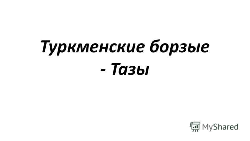 Туркменские борзые - Тазы