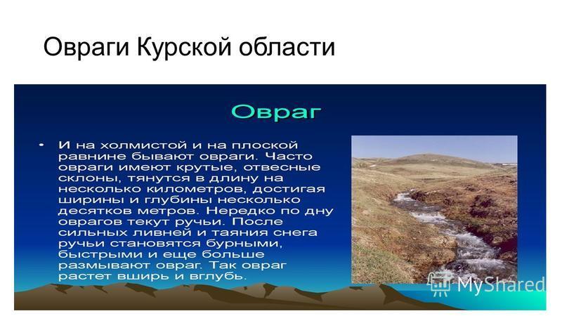 Овраги Курской области