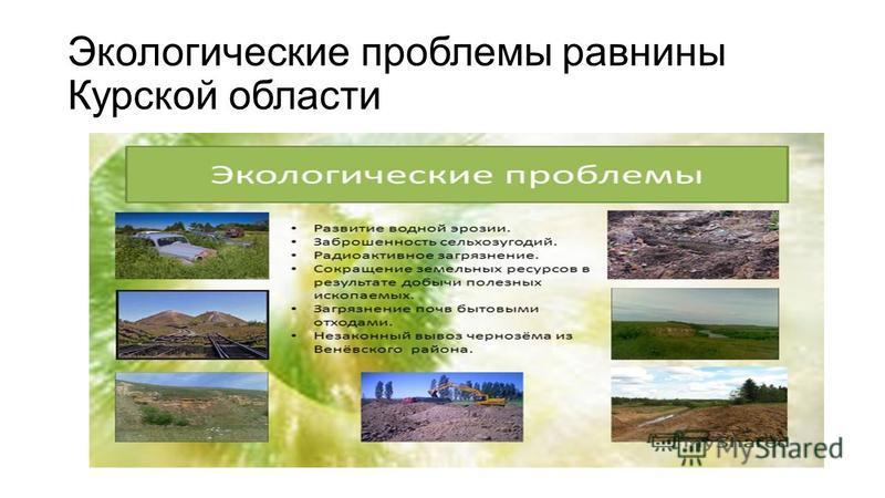 Экологические проблемы равнины Курской области