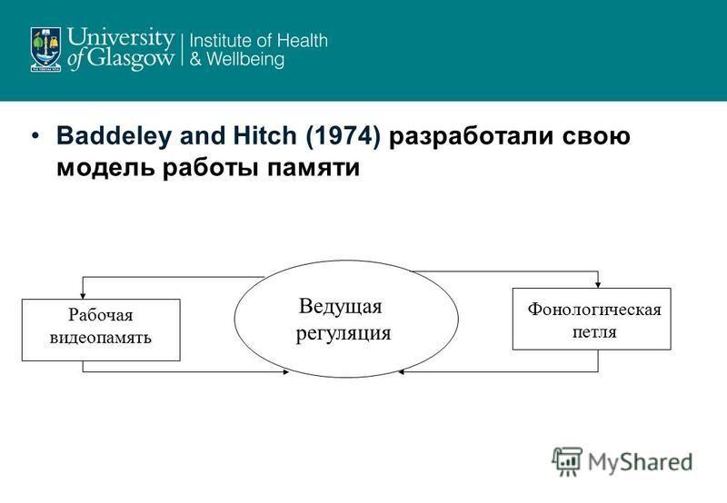 Baddeley and Hitch (1974) разработали свою модель работы памяти Фонологическая петля Рабочая видеопамять Ведущая регуляция