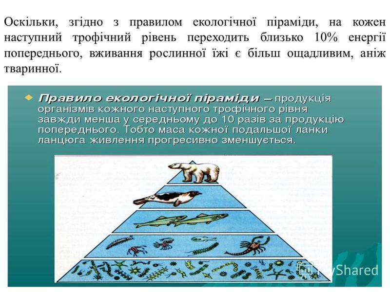 Оскільки, згідно з правилом екологічної піраміди, на кожен наступний трофічний рівень переходить близько 10% енергії попереднього, вживання рослинної їжі є більш ощадливим, аніж тваринної.