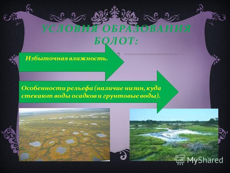 Причины образования болот Болота возникают двумя основными путями: заболачивание почвы зарастание водоемов