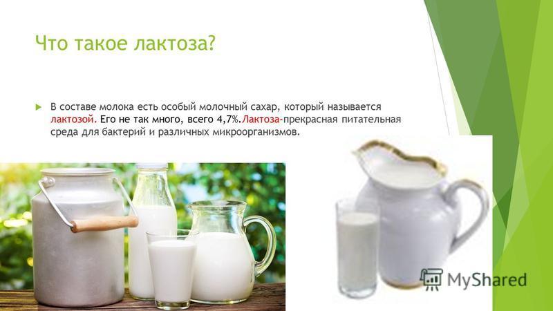 Почему скисает молоко? Процесс скисания молока довольно сложный микробиологический процесс. В любом молоке обязательно присутствуют в огромном количестве молочнокислые бактерии. Молоко является идеальной питательной средой для них, и если оно хранитс