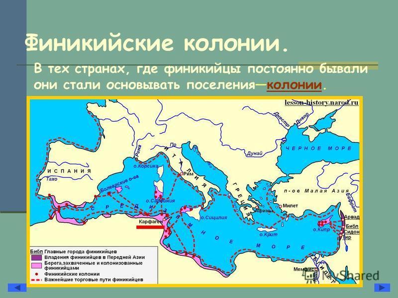 Финикийские колонии. В тех странах, где финикийцы постоянно бывали они стали основывать поселения колонии.колонии