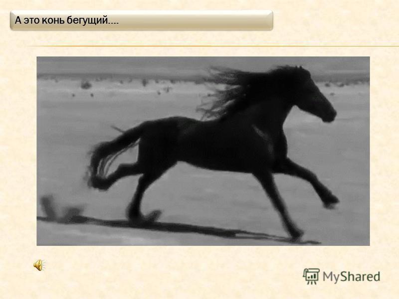 Это конь! Вот так он ржет и фыркает.