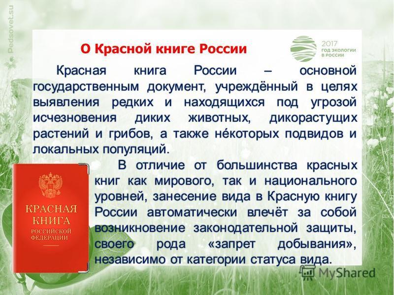 Красная книга России – основной государственным документ, учреждённый в целях выявления редких и находящихся под угрозой исчезновения диких животных, дикорастущих растений и грибов, а также некоторых подвидов и локальных популяций. В отличие от больш