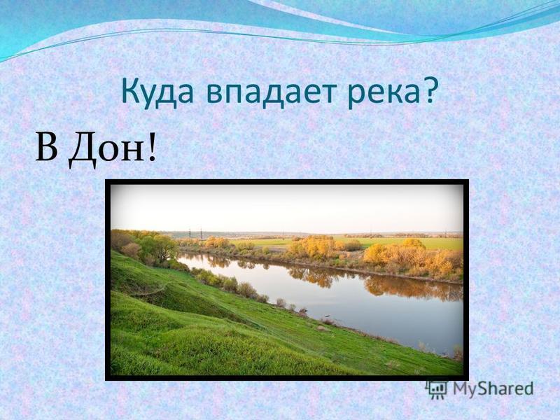 Куда впадает река? В Дон!