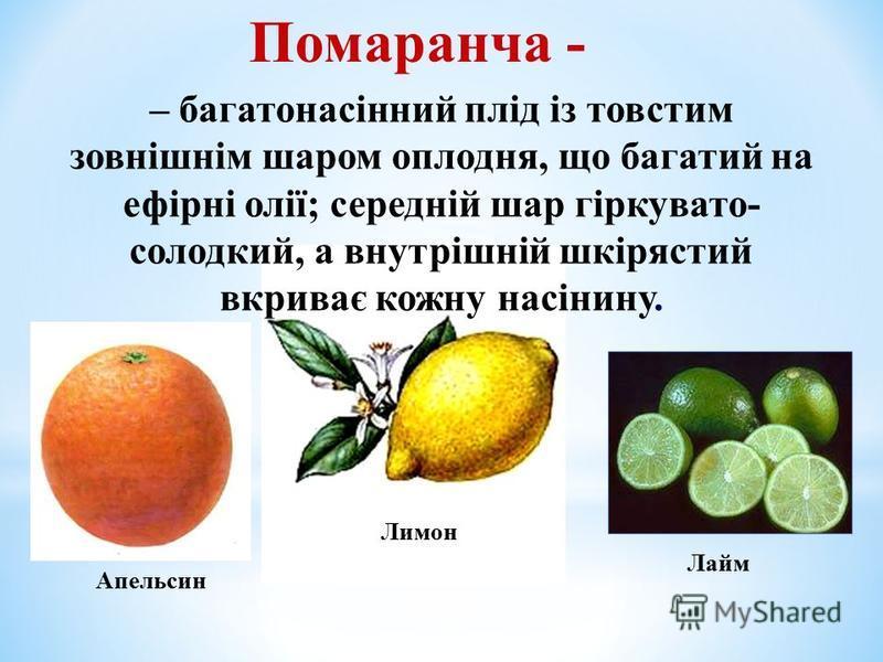 Помаранча - – багатонасінний плід із товстим зовнішнім шаром оплодня, що багатий на ефірні олії; середній шар гіркувато- солодкий, а внутрішній шкірястий вкриває кожну насінину. Апельсин Лимон Лайм