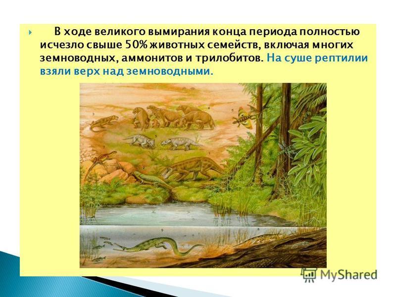В ходе великого вымирания конца периода полностью исчезло свыше 50% животных семейств, включая многих земноводных, аммонитов и трилобитов. На суше рептилии взяли верх над земноводными.