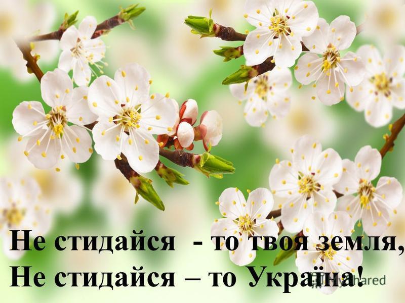 , Не стидайся - то твоя земля, Не стидайся – то Україна !