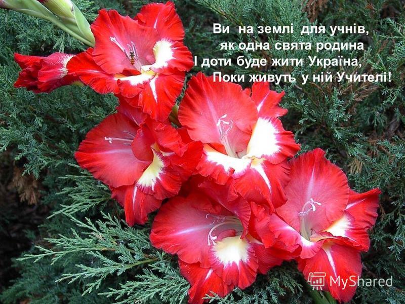 Ви на землі для учнів, як одна свята родина І доти буде жити Україна, Поки живуть у ній Учителі!