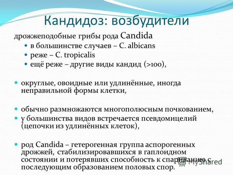 Кандидоз: возбудители дрожжеподобные грибы рода Candida в большинстве случаев – C. albicans реже – C. tropicalis ещё реже – другие виды кандид (>100), округлые, овоидные или удлинённые, иногда неправильной формы клетки, обычно размножаются многополюс