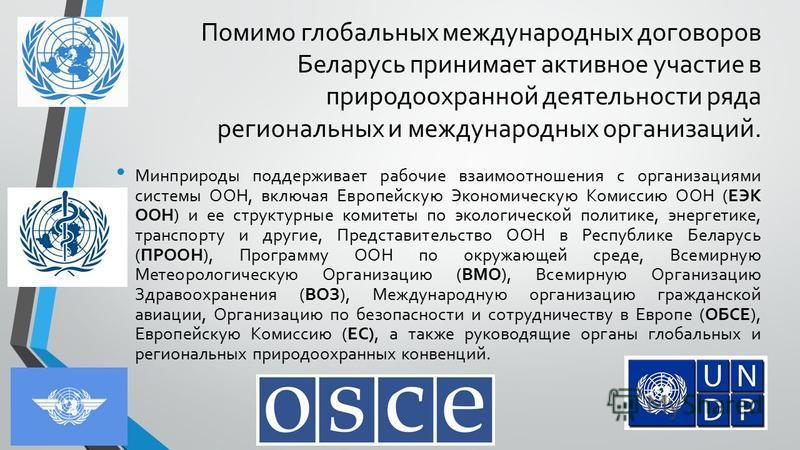 Помимо глобальных международных договоров Беларусь принимает активное участие в природоохранной деятельности ряда региональных и международных организаций. Минприроды поддерживает рабочие взаимоотношения с организациями системы ООН, включая Европейск
