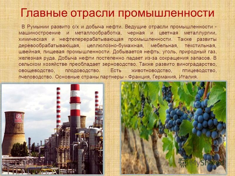 Главные отрасли промышленности В Румынии развито с/х и добыча нефти. Ведущие отрасли промышленности - машиностроение и металлообработка, черная и цветная металлургии, химическая и нефтеперерабатывающая промышленности. Также развиты деревообрабатывающ