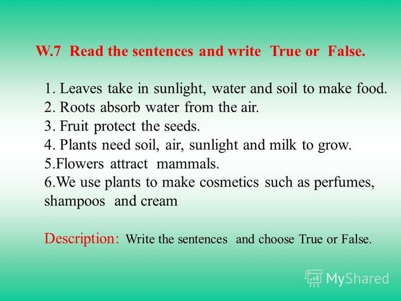 W.7 Read the sentences and write True or False. 1. Leaves take in sunlight, water and soil to make food. 2. Roots absorb water from the air. 3. Fruit protect the seeds. 4. Plants need soil, air, sunlight and milk to grow. 5.Flowers attract mammals. 6