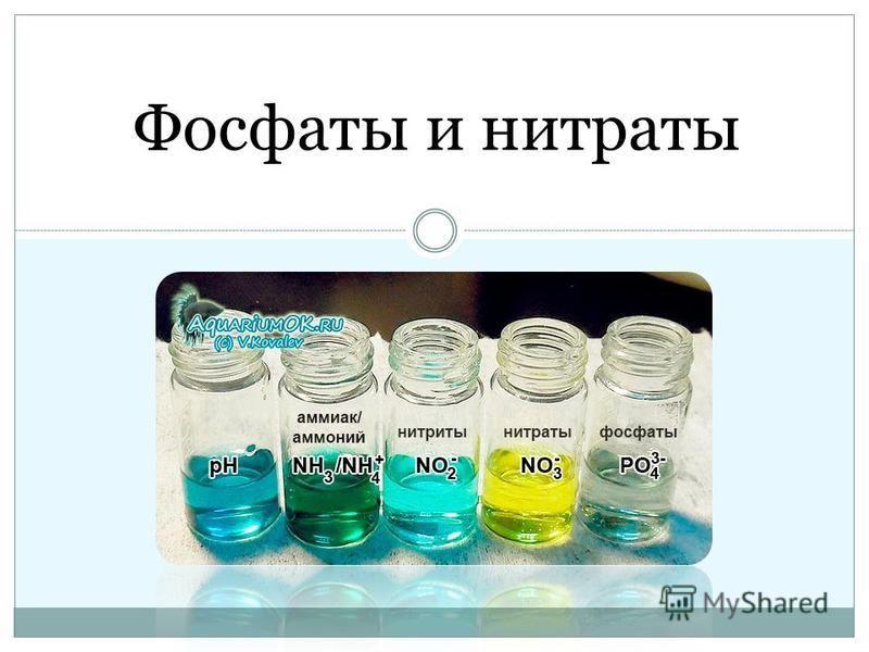 Фосфаты и нитраты