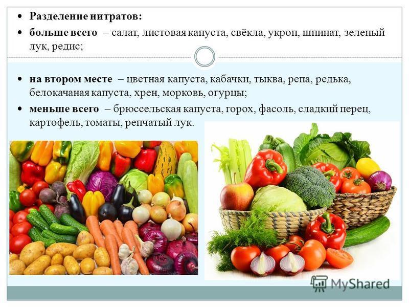 Разделение нитратов: больше всего – салат, листовая капуста, свёкла, укроп, шпинат, зеленый лук, редис; на втором месте – цветная капуста, кабачки, тыква, репа, редька, белокочанная капуста, хрен, морковь, огурцы; меньше всего – брюссельская капуста,