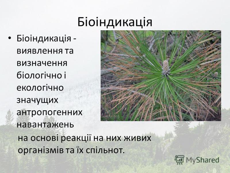 Біоіндикація Біоіндикація - виявлення та визначення біологічно і екологічно значущих антропогенних навантажень на основі реакції на них живих організмів та їх спільнот.
