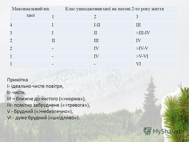 Максимальний вік хвої Клас ушкодження хвої на пагоні 2-го року життя 123 4II-IIIII 3III>III-IV 2IIIIIIV 2- >IV-V 1-IV>V-VI 1--VI Примітка I- ідеально чисте повітря, II- чисте, III – ближче до чистого («>норма»), IV- помітно забруднене («>тревога»), V