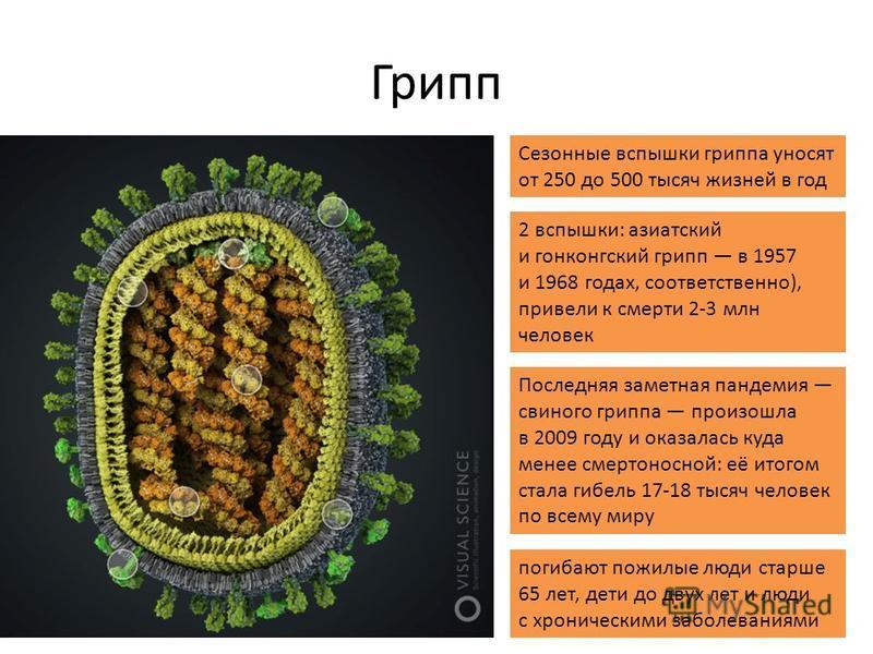 Грипп Сезонные вспышки гриппа уносят от 250 до 500 тысяч жизней в год 2 вспышки: азиатский и гонконгский грипп в 1957 и 1968 годах, соответственно), привели к смерти 2-3 млн человек Последняя заметная пандемия свиного гриппа произошла в 2009 году и о
