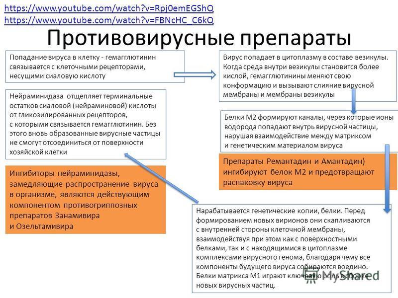 Противовирусные препараты https://www.youtube.com/watch?v=Rpj0emEGShQ https://www.youtube.com/watch?v=FBNcHC_C6kQ Попадание вируса в клетку - гемагглютинин связывается с клеточными рецепторами, несущими сиаловую кислоту Вирус попадает в цитоплазму в