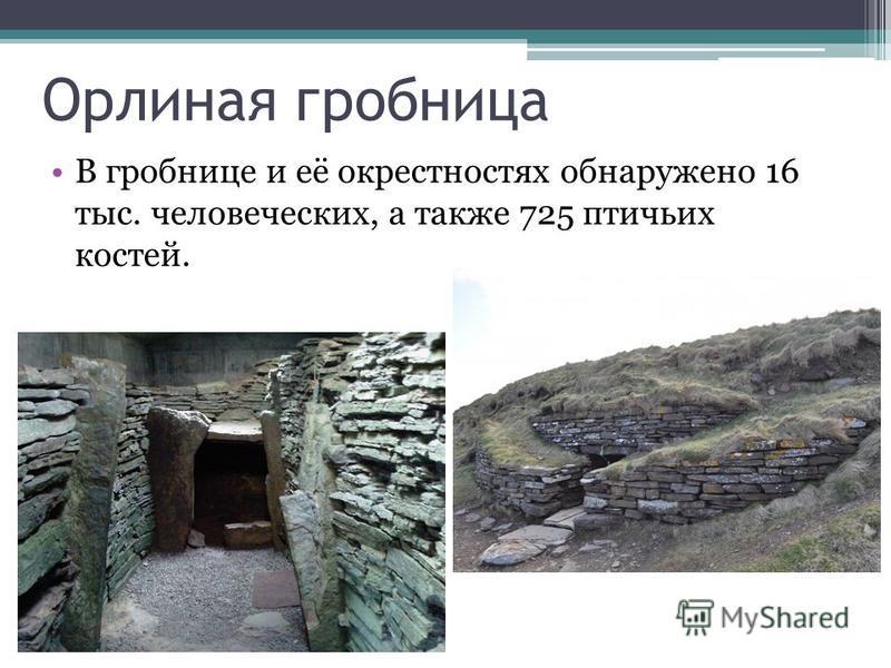 Орлиная гробница В гробнице и её окрестностях обнаружено 16 тыс. человеческих, а также 725 птичьих костей.