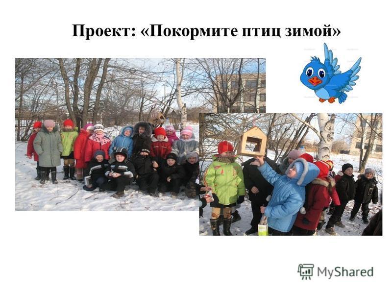 Проект: «Покормите птиц зимой»