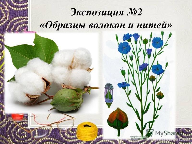 Экспозицию 1 «История возникновения ткани»