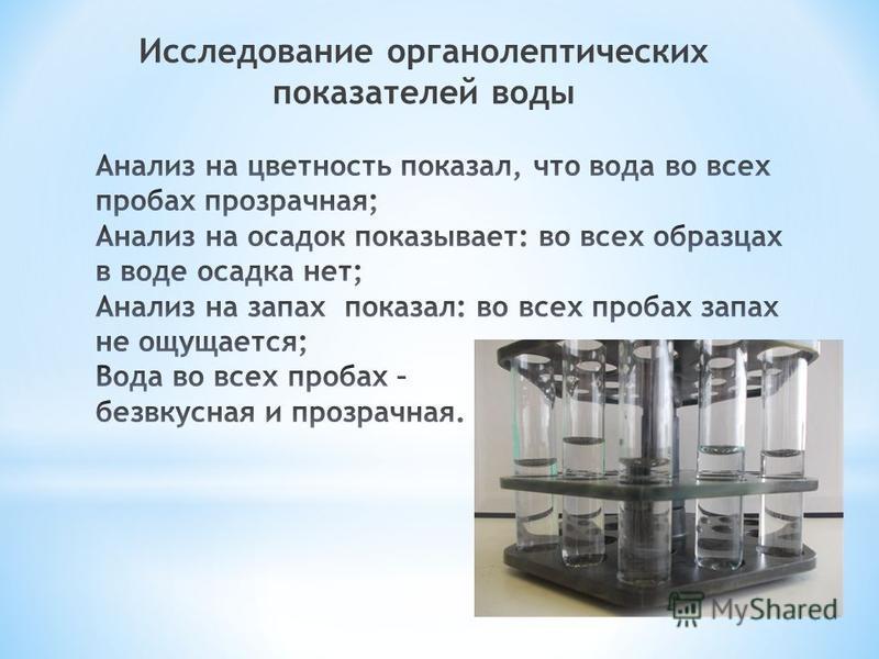 Исследование органолептических показателей воды