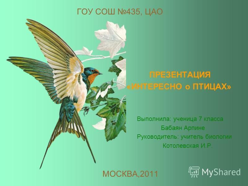 Москва 2011 г. ИНФОРМАЦИОННЫЙ ПРОЕКТ