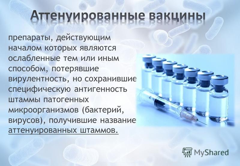 препараты, действующим началом которых являются ослабленные тем или иным способом, потерявшие вирулентность, но сохранившие специфическую антигенность штаммы патогенных микроорганизмов (бактерий, вирусов), получившие название аттенуированных штаммов.