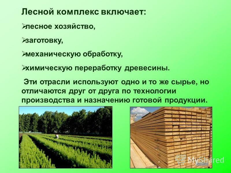 Лесной комплекс включает: лесное хозяйство, заготовку, механическую обработку, химическую переработку древесины. Эти отрасли используют одно и то же сырье, но отличаются друг от друга по технологии производства и назначению готовой продукции.