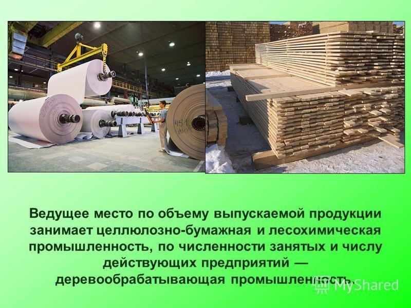 Ведущее место по объему выпускаемой продукции занимает целлюлозно-бумажная и лесохимическая промышленность, по численности занятых и числу действующих предприятий деревообрабатывающая промышленность.
