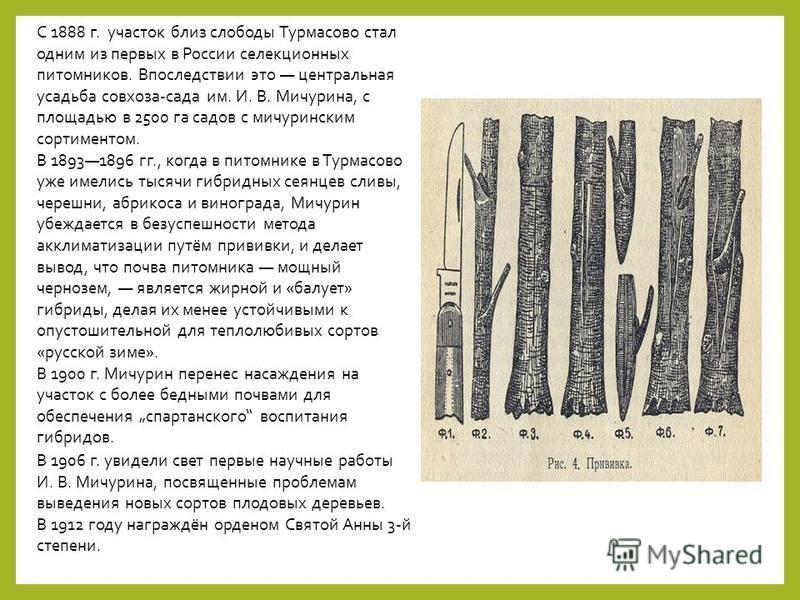 С 1888 г. участок близ слободы Турмасово стал одним из первых в России селекционных питомников. Впоследствии это центральная усадьба совхоза-сада им. И. В. Мичурина, с площадью в 2500 га садов с мичуринским сортиментом. В 18931896 гг., когда в питомн