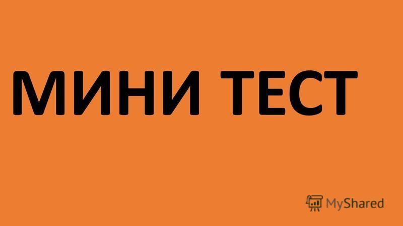 МИНИ ТЕСТ