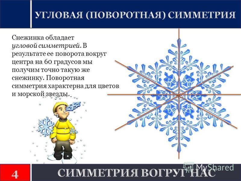 Снежинка обладает угловой симметрией. В результате ее поворота вокруг центра на 60 градусов мы получим точно такую же снежинку. Поворотная симметрия характерна для цветов и морской звезды.