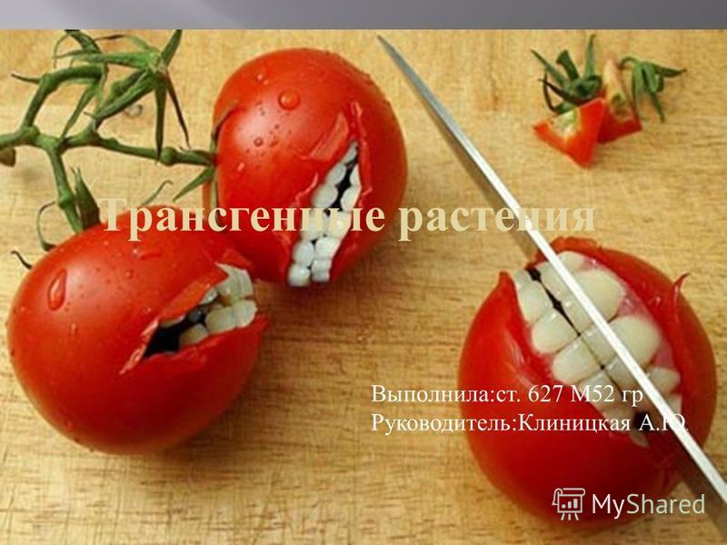 Трансгенные растения Выполнила:ст. 627 М52 гр Руководитель:Клиницкая А.Ю.