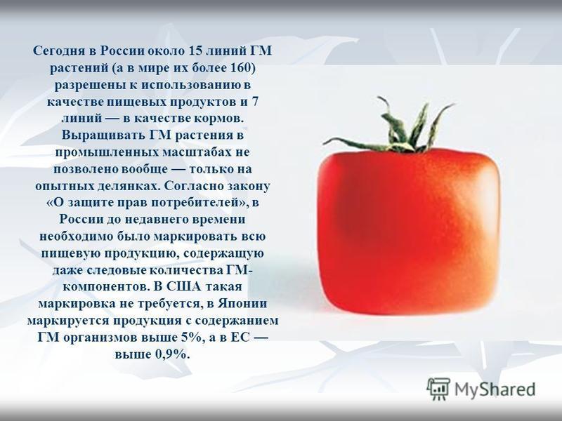 Сегодня в России около 15 линий ГМ растений (а в мире их более 160) разрешины к использованию в качестве пищевых продуктов и 7 линий в качестве кормов. Выращивать ГМ растения в промышленных масштабах не позволено вообще только на опытных делянках. Со