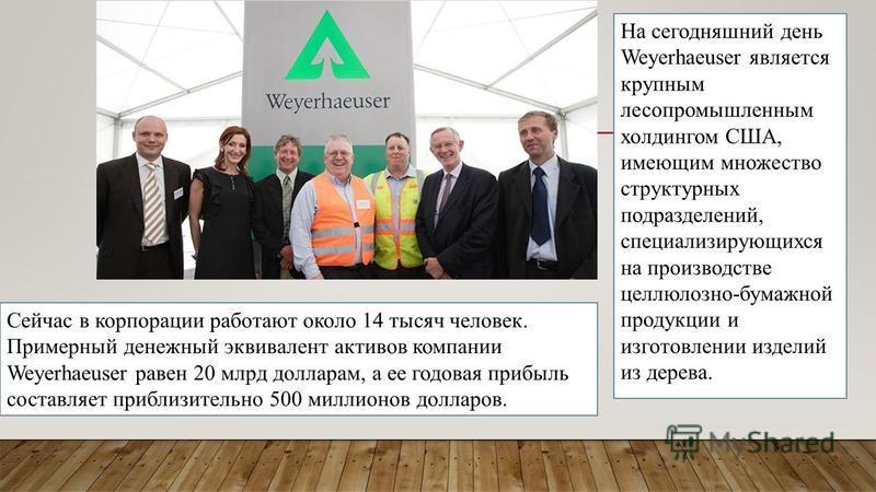 На сегодняшний день Weyerhaeuser является крупным лесопромышленным холдингом США, имеющим множество структурных подразделений, специализирующихся на производстве целлюлозно-бумажной продукции и изготовлении изделий из дерева. Сейчас в корпорации рабо