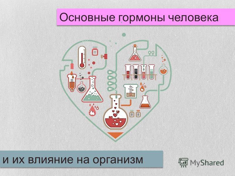 Основные гормоны человека и их влияние на организм