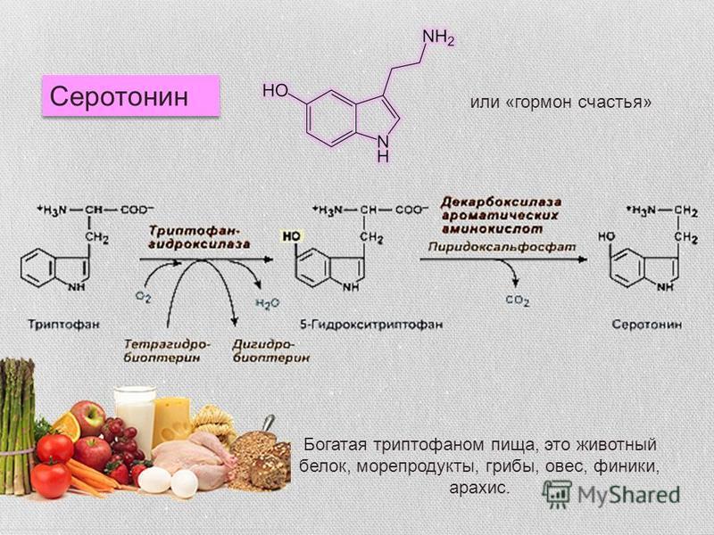 Серотонин или «гормон счастья» Богатая триптофаном пища, это животный белок, морепродукты, грибы, овес, финики, арахис.