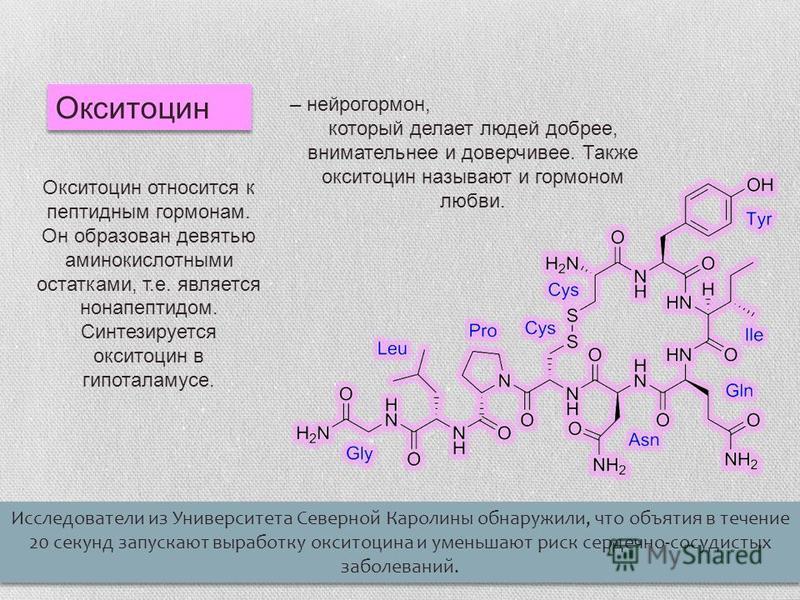 Окситоцин Исследователи из Университета Северной Каролины обнаружили, что объятия в течение 20 секунд запускают выработку окситоцина и уменьшают риск сердечно-сосудистых заболеваний. Окситоцин относится к пептидным гормонам. Он образован девятью амин