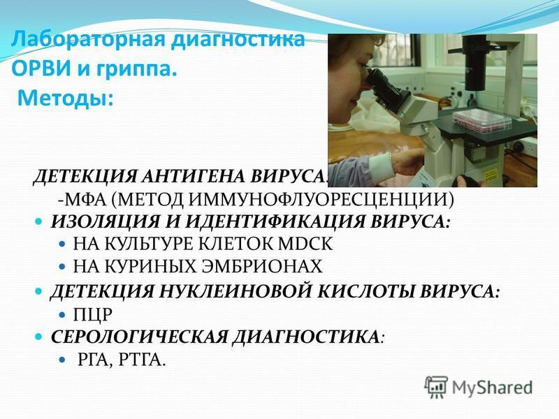 Лабораторная диагностика ОРВИ и гриппа. Методы: ДЕТЕКЦИЯ АНТИГЕНА ВИРУСА: -МФА (МЕТОД ИММУНОФЛУОРЕСЦЕНЦИИ) ИЗОЛЯЦИЯ И ИДЕНТИФИКАЦИЯ ВИРУСА: НА КУЛЬТУРЕ КЛЕТОК МDCK НА КУРИНЫХ ЭМБРИОНАХ ДЕТЕКЦИЯ НУКЛЕИНОВОЙ КИСЛОТЫ ВИРУСА: ПЦР СЕРОЛОГИЧЕСКАЯ ДИАГНОСТИ