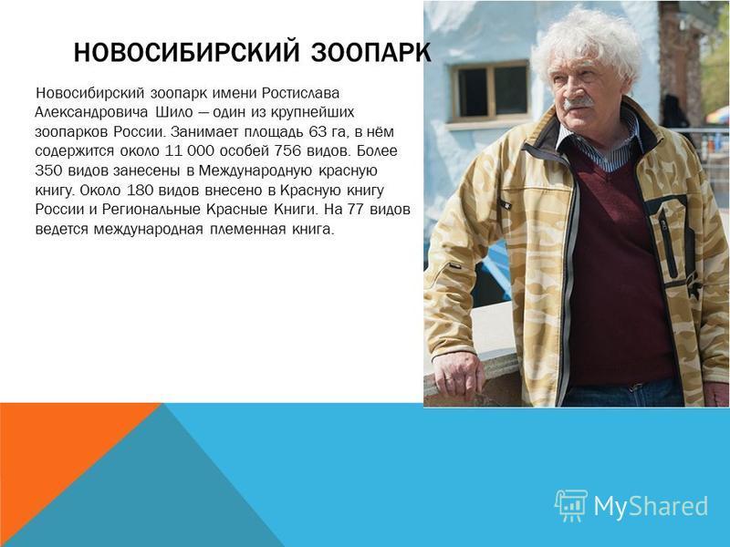 НОВОСИБИРСКИЙ ЗООПАРК Новосибирский зоопарк имени Ростислава Александровича Шило один из крупнейших зоопарков России. Занимает площадь 63 га, в нём содержится около 11 000 особей 756 видов. Более 350 видов занесены в Международную красную книгу. Окол