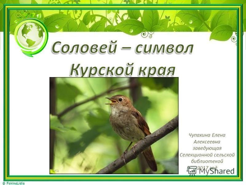 © FokinaLidia Чупахина Елена Алексеевна заведующая Селекционной сельской библиотекой 2017 год