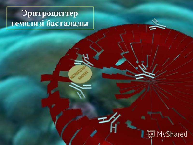 Эритроциттер гемолизі басталлоды