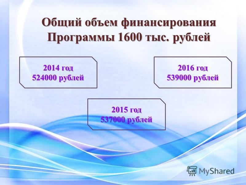 Общий объем финансирования Программы 1600 тыс. рублей 2014 год 524000 рублей 2015 год 537000 рублей 2016 год 539000 рублей