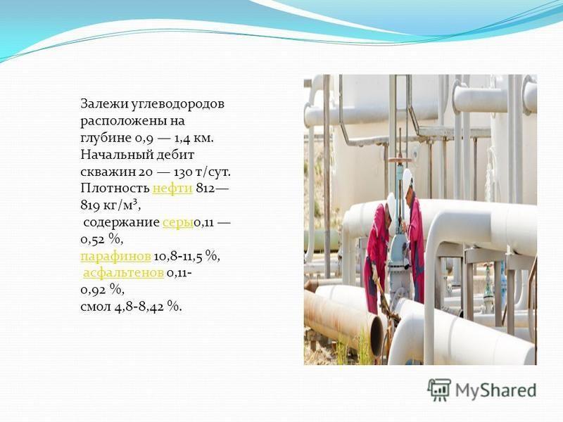 Залежи углеводородов расположены на глубине 0,9 1,4 км. Начальный дебит скважин 20 130 т/сут. Плотность нефти 812 819 кг/м³,нефти содержание серы 0,11 0,52 %, серы парафинов 10,8-11,5 %, асфальтенов 0,11- 0,92 %,асфальтенов смол 4,8-8,42 %.